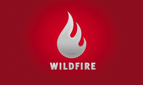 Google neemt Wildfire over